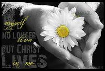 My Jesus<3 / by Alyssa Ann