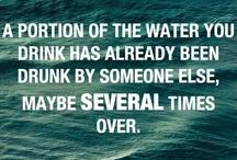 Weird but TRUE!! / by Jen Neil