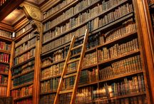 Library / by Wilfred Kalf