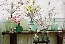 Glass Bottles and Jars / by Brenda Romine