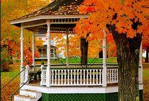 #Seasons #Spring #Summer #Winter #Fall / #Seasons #Spring #Summer #Winter #Fall / by Wayne Moran