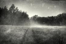 Alternative Process Photography / by Michael Winokur