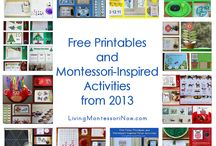 Montessori classroom and activities / by Bridget Hudeck