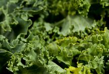 Leafy green recipes / by Torri Bates Janzen