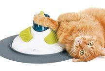 Willie el gato / by Kathy DeBoy