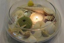 Shells / by Lisa Wertzbaugher