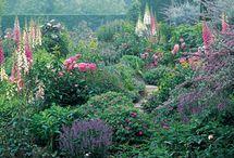Gardens Gardens Gardens / My happy place;my bliss / by Carolynne Mason