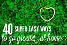 green home/beauty recipes / every day, i want more and more to keep as many chemicals away from me as possible.  for the environment and for my body and mind -- don't you feel the same way? / by Laurie Ducharme