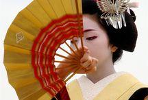 geisha . / by Steve Bowden