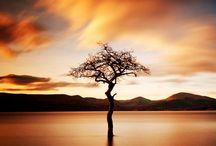 Loch Lomond pictures / by yourwedding atlochlomond