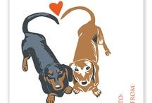 I Love Wiener Dogs / by Chriseda Howard