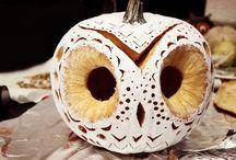 Owls / by Carol Johnson