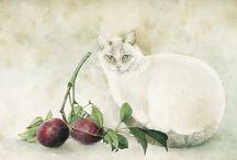 Cats cats cats II / by Pandomonium