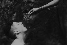 Devotion / by Catherine Drea (Foxglove Lane Studio)