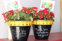Teacher Gifts / by Catie Hays