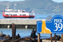Fisherman's Wharf SF / Our favorite things to do at San Francisco Fisherman's Wharf with kids / by Travel for Kids