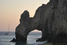 Cabo / by Renee