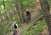 fitness / mountain biking / cycling / by Lisa Salvo