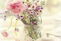 Flores / by elena vides