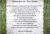 Favorite Poem / by Olivia Rahn