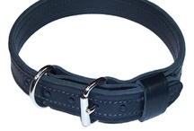 Stallion Leather Canine Leather Goods / Stallion Leather manufactures K-9 dog leashes and collars. 100% American Made. Call 414-764-7126 or visit www.stallionleather.com / by Stallion Leather