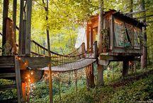 tree house / by Jennifer Watson