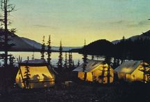 Camping & Glamping / by Laura J.