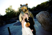 Wild Weddings at the Zoo / Wedding photos, spaces, ideas, and more! / by Minnesota Zoo