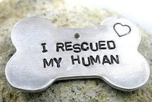 Dogs / Dogs & Puppys we Love / by Corpus Christi Animal Care Services
