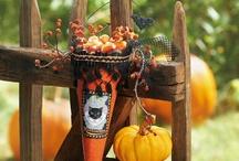 Halloween Fun  / by Kimmothy Lane