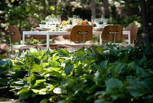 Modern Rustic / by Revel Events