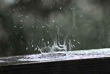 Rain on me / by Kristy Perry
