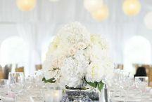 Rob's wedding / by Garvie Garvie