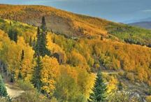Fall Festivals and Foliage / Check out some of the best mountain festivals and events this fall! / by VacationRoost