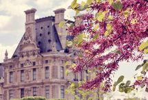 Seasons / by Michelle Marie