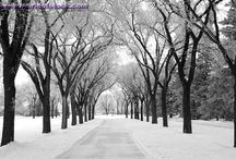Winnipeg Wonderful / by Kendra Tait