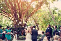 Miami Weddings / Memories from Miami weddings  / by Sydney