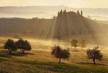 Tuscany / by Martin Rak