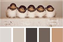Color my world / by Line Brochu