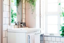 Upstairs Bathroom / by Amy Smith