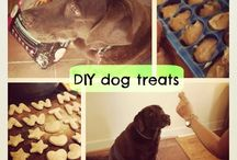 Pup Treats / by McKenna Medley