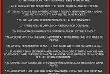 Useless info / by Rachel Meredith