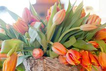 Flower arrangements / by Amy Hobbs Mahoney