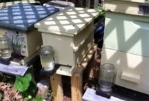 Beekeeping / by Charlotte Bouldin