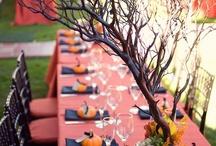 Wedding ideas / by Sara Steil
