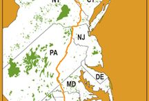 Appalachian Trail / Tips, info & knowledge to help you hike or backpack the Appalachian Trail from GA to ME. Timothy has hiked the Appalachian Trail in WV, MD, PA, NJ, NY & CT. / by Timothy Lee