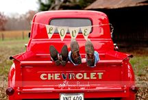 Trucks  / by Stephanie Unrue