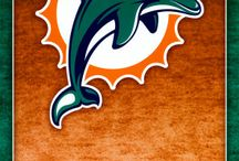 Miami Dolphins / by Timothy Hill