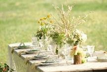 garden party / by Caron Clarke