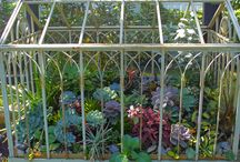 ❉ Tʀєɴᴅy TєʀʀคʀᎥน๓ร ❉ / Indoor terrariums. See also 'Hot houseplants' and 'Indoor gardening' / by ✿⊱ ᎷᎯᏒᎥᏖᏕᎯ'Ꮥ ᎶᎯᏒᎠᎬN ⊰✿